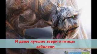 канцтовары киев www.number1.in.ua(, 2013-04-11T12:10:41.000Z)