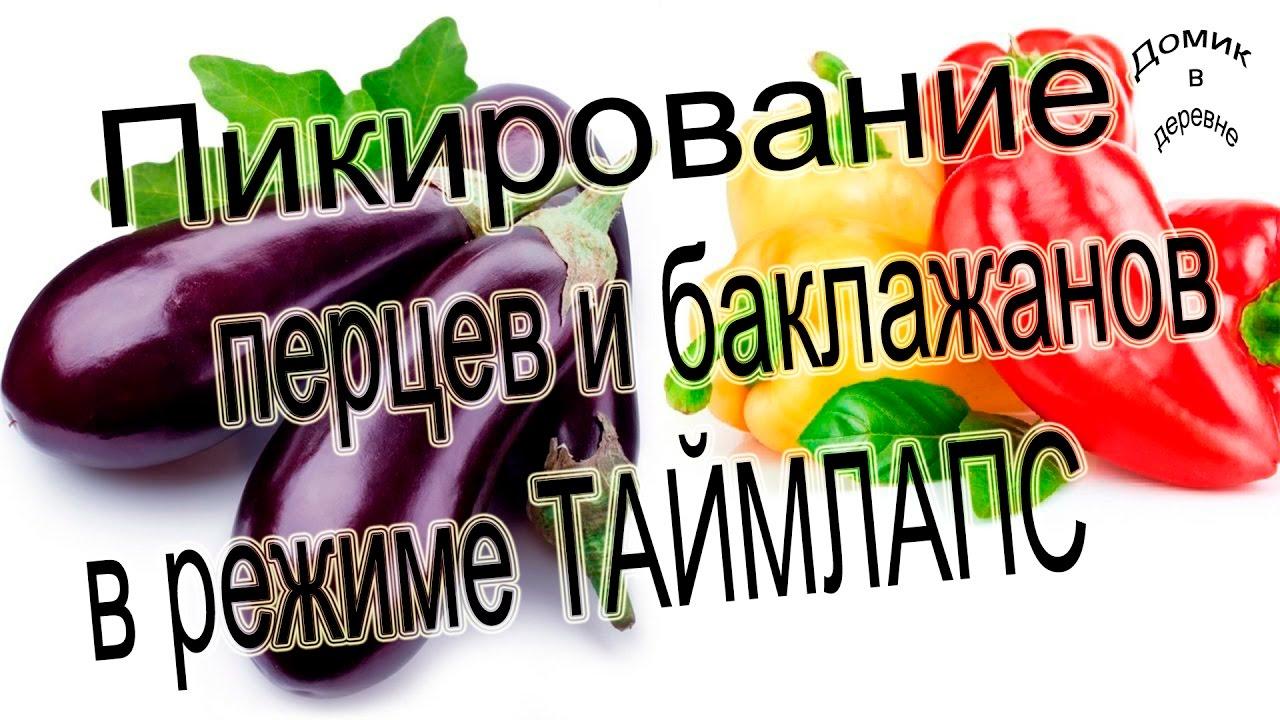 pikirovka-pertsev-i-baklazhan