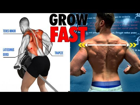 12 BACK EXERCISES (you must try) FOR A WIDE V-TAPER BACK!