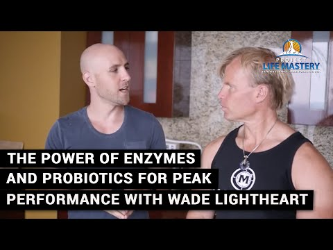 The Power Of Enzymes And Probiotics For Peak Performance Wit