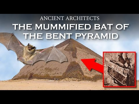 The Mummified Bat in the Bent Pyramid of Egypt | Ancient Architects