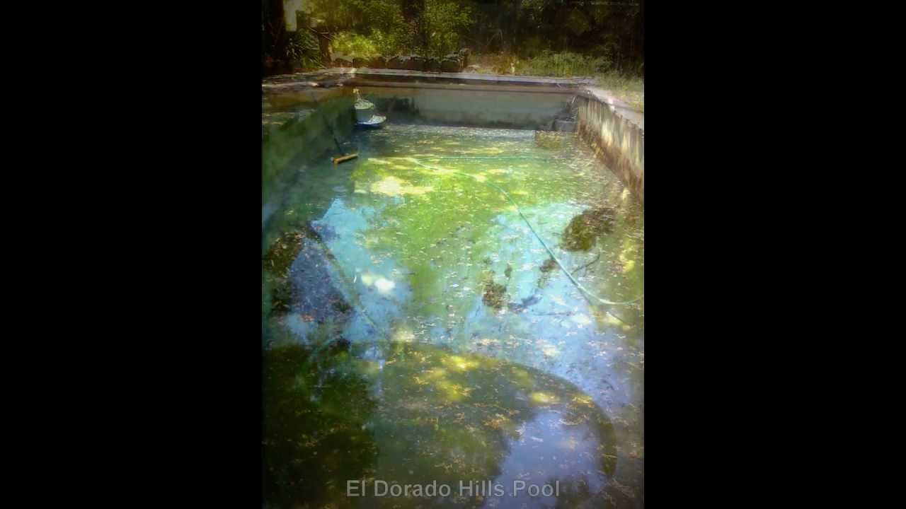The Dirtiest Pools In Sacramento Ca Youtube