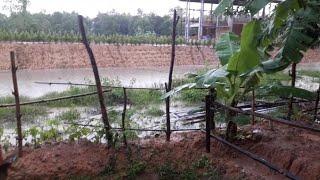 จัดการน้ำตามศาสตร์พระราชาแก้ปัญหาน้ำท่วมหนักในหน้าฝน|สวนพอเพียงในฝัน ๑ไร่พอเพียง