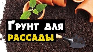 Грунт для рассады, как смешать землю (своими руками)