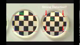 Difference Between Prescription Lenses [Explained]