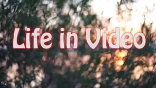 Эта удивительная Лименда(Видео ролик снят в городе Котлас в микро районе