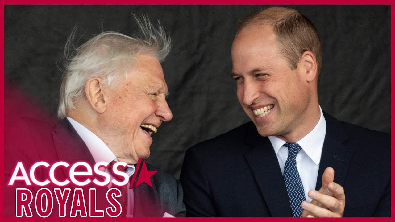 Prince William Teases Project With Sir David Attenborough