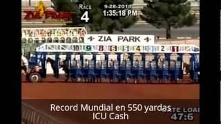 Todos los Records Mundiales de Caballos Cuarto de Milla