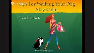 Dog Walking Tips - Stay Calm (2 Of 5)