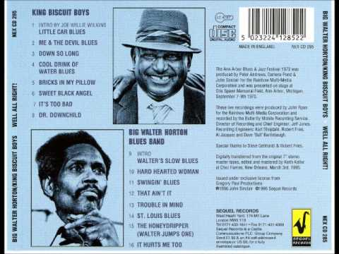 Big Walter Horton Blues Band - Trouble In Mind mp3