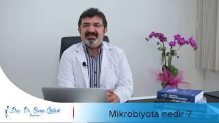 Doç. Dr. Barış Öztürk - Mikrobiyota nedir?