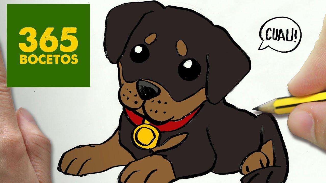 Como Dibujar Un Perro Rottweiler Paso A Paso Os Ensenamos A Dibujar