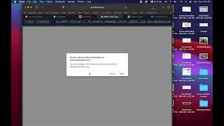 Modern Safari Does Not Display JPX/JPEG 2000 Images in PDFs