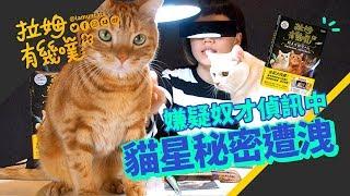 新書首度公開貓星球秘密!貓奴現身說法|拉姆有幾噗 ⋈