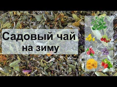 Вопрос: Как приготовить травяной чай?