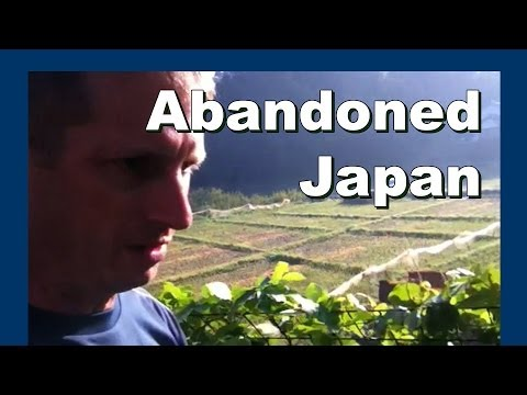 Abandoned Japan farmers bamboo pile 放棄された日本の農家の竹の杭 - Abandoned Japan 日本の廃墟