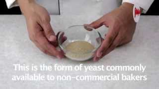 Lesson: Active dry yeast - Fatafeat Academy - Fatafeat