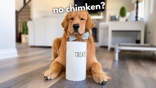 Feeding My Dog Invisible Treats