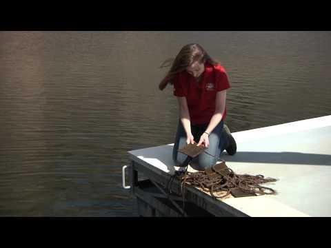 Salt River Project B roll Lesly Swanson