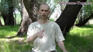 Часть 1. Медитация в интегральной йоге Шри Ауробиндо(http://supreme-yoga.ru/ Видео йоги и медитации. Вторая Инициация Николая Санта. Установление неподвижности, контакт..., 2011-06-20T17:55:04.000Z)
