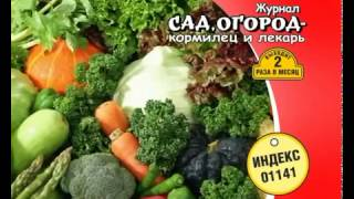 "Журнал ""Сад,огород - кормилец и лекарь"" + ""Спецвыпуск ""Сад, огород - кормилец и лекарь"""