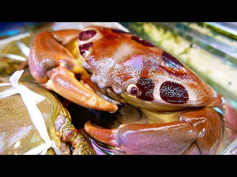 Japan Street Food 7-ELEVEN CRAB Japanese Seafood Okinawa