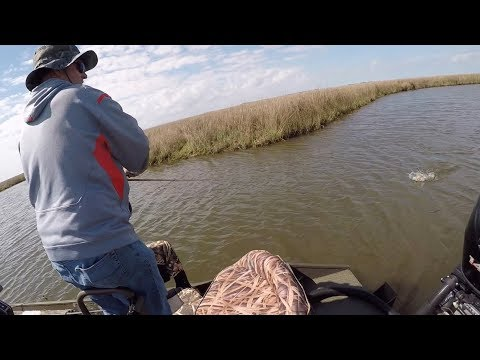 Spin to win! Roulette wheel decides which baits we fish