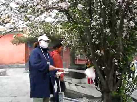 Beijing Forbidden City Yong Shou Men