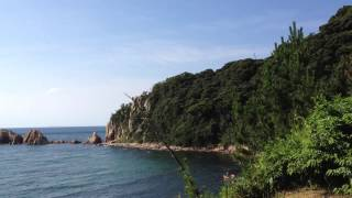 萩城 妙玖寺櫓跡
