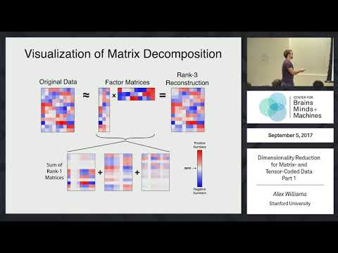 Dimensionality Reduction for Matrix- and Tensor-Coded Data [Part 1]
