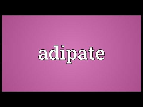 Header of adipate