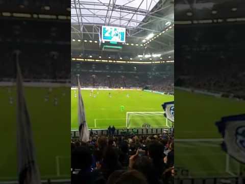 Schalke - Hoffenheim 1:0 von Schöpf