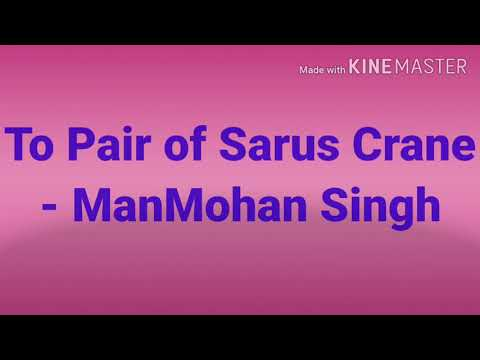 To a Pair of Sarus Crane