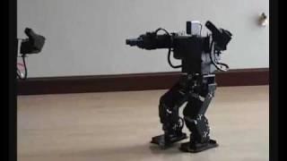 Tai Chi Chuan,china robot, chinese Gongfu