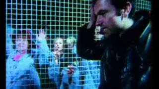 Bear Cage - The Stranglers
