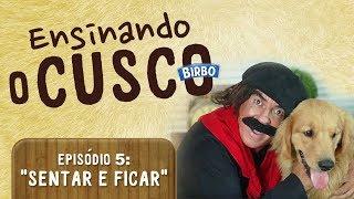 """ENSINANDO O CUSCO 5 - COMANDOS """"SENTAR"""" E """"FICAR"""""""