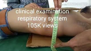 Respiratory system examination