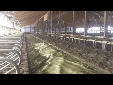 McCormick Farms - Dairy Reclamation System