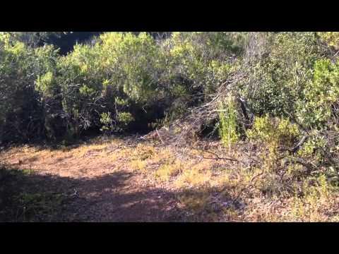 Foot Hills Park, Palo Alto CA, Los Trancos Trail, Southern trek