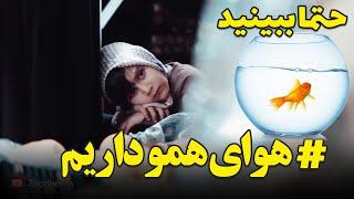 هنوز هوای همو داریم - ایران من