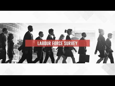 LFS vs Registered Employment/Unemployment