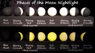 Learning The Moon Phases | DIY Kids Night Light | Science Project For Kids | Lunar Phases Model