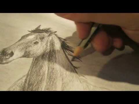 how i draw horses step by step pencil