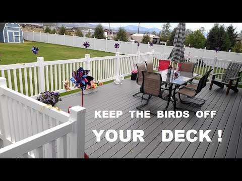 Ordinaire Keep Birds Off The Deck Railing