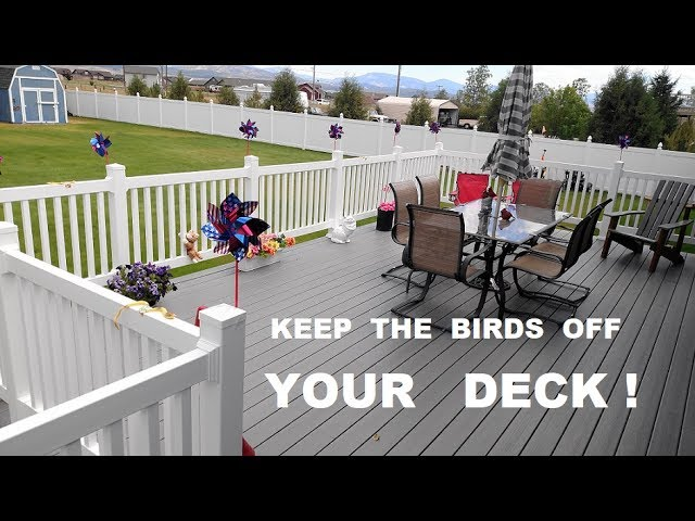 keep birds off the deck railing youtube