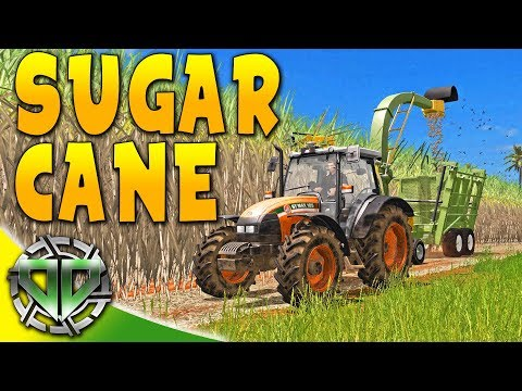Harvesting Sugar Cane : Estancia Lapacho : Farming Simulator 17 Platinum (PC)