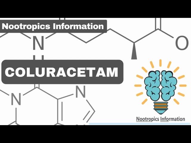 Learning Nootropics Information
