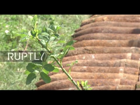 Russia: Over 300 WWII Munitions Destroyed In Controlled Blasts Near Voronezh