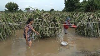 Tin tức 24h Mới Nhất Hôm Nay : Mưa lũ gây ngập lụt tại nhiều địa phương ở Bình Thuận