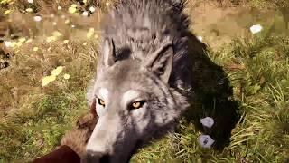 mayday_tobi的PS4播送 極地戰豪-野蠻紀源 之我的寵物征服